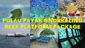 pulau payar snorkeling reef platform
