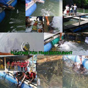 floating-fish-farm