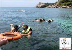 koh lipe snorkeling from langkawi